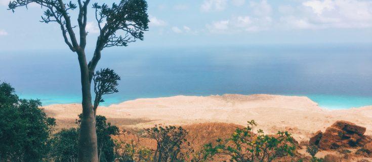 Homhil Views